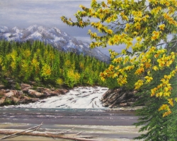 A Glimpse of Bow Falls