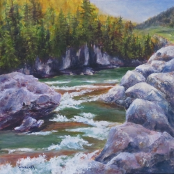 Rushing Waters Elbow Falls