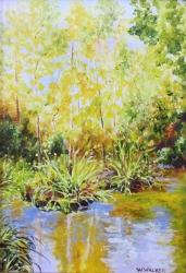 Silent Pond SOLD